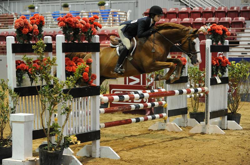 Horse show (90).jpg