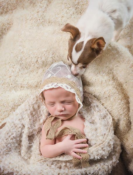 newborn pictures marion cedar rapids iowa 129.jpg
