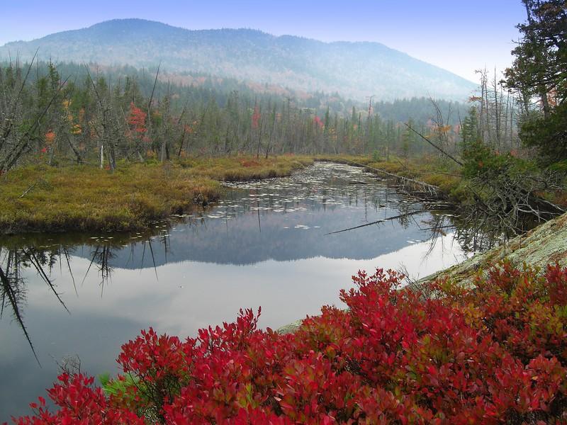 10.23.2015.South Creek, off Rt 3, Saranac Lake, oct 6, 2007CIMG0662a.jpg