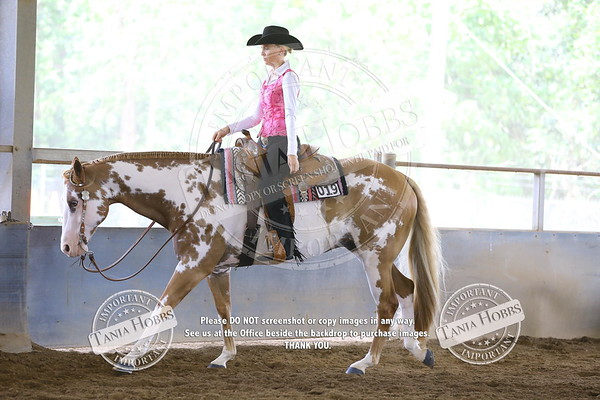 PAINT HORSE NATIONAL SHOW 2017