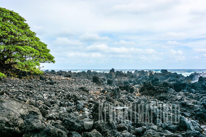 Maui109.jpg