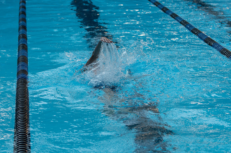 lcs_swimming_kevkramerphoto-537.jpg