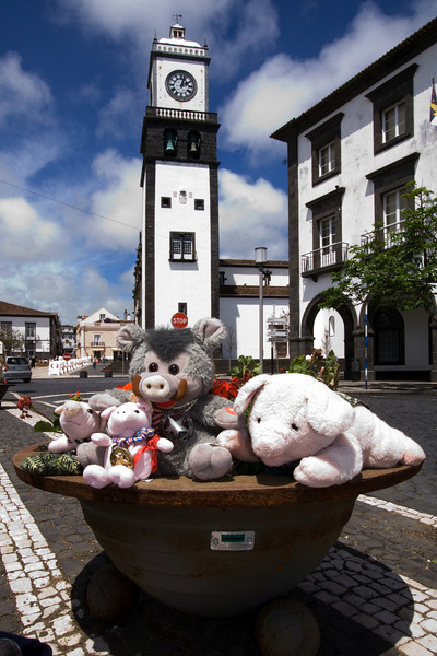 Gang in the Azores.jpg