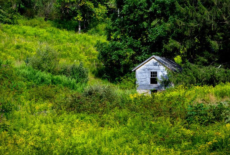 ricketts glen - cabin on ride home (p).jpg