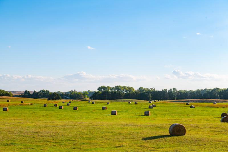 Horn Ranch-1359.jpg