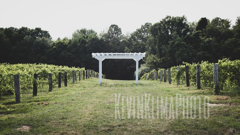 SW Michigan Wine Country