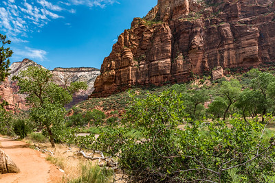 Zion National_2892