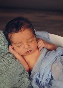 Little Austen