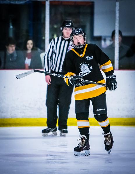 Bruins2-180.jpg