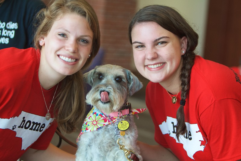 Paws a While Service Dogs visit campus during Orientation to make the students feel welcome!