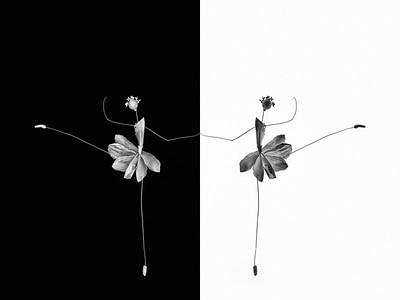 Black_&_White