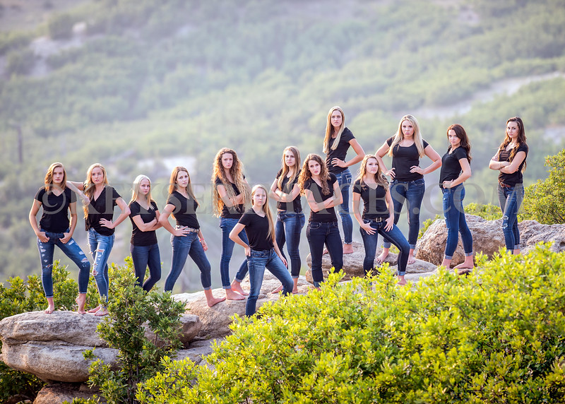 2015-16 Chaparral Varsity Volleyball