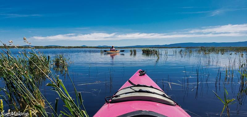 06-14-2019 Kayaking Pelican Cut-5.jpg