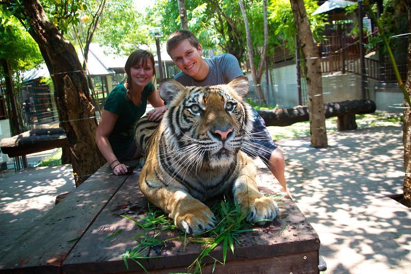 Roewe_Thailand 62.jpg