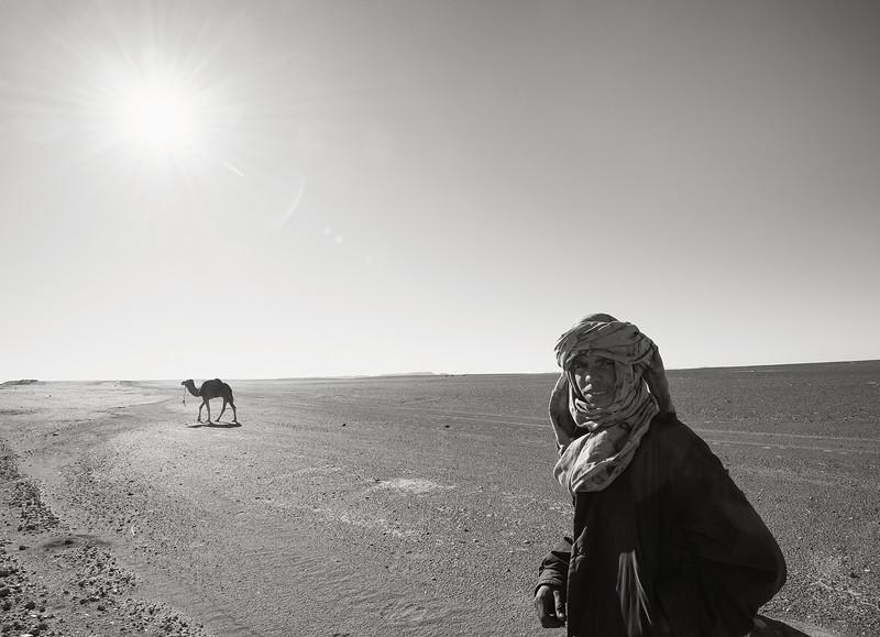 Desert Touareg looses his camel.  Southern Morocco, 2018