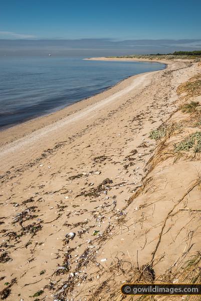 Pt Cook Beach
