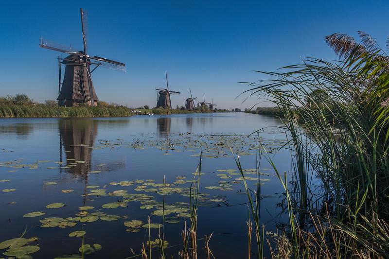 Kinderdijk - South Holland - Netherlands (September 2018)