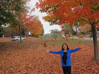 Maine, October 2014