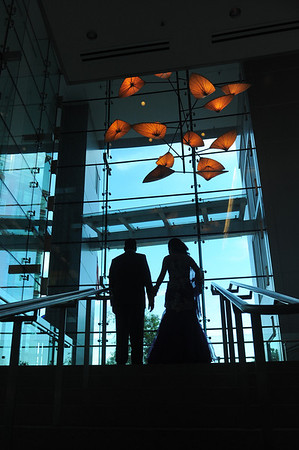 Nikul & Karuna's Wedding Day