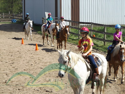 Home School Horsemanship Camp