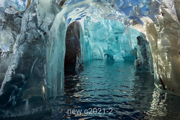 Rodefjord, Rolige Glacier