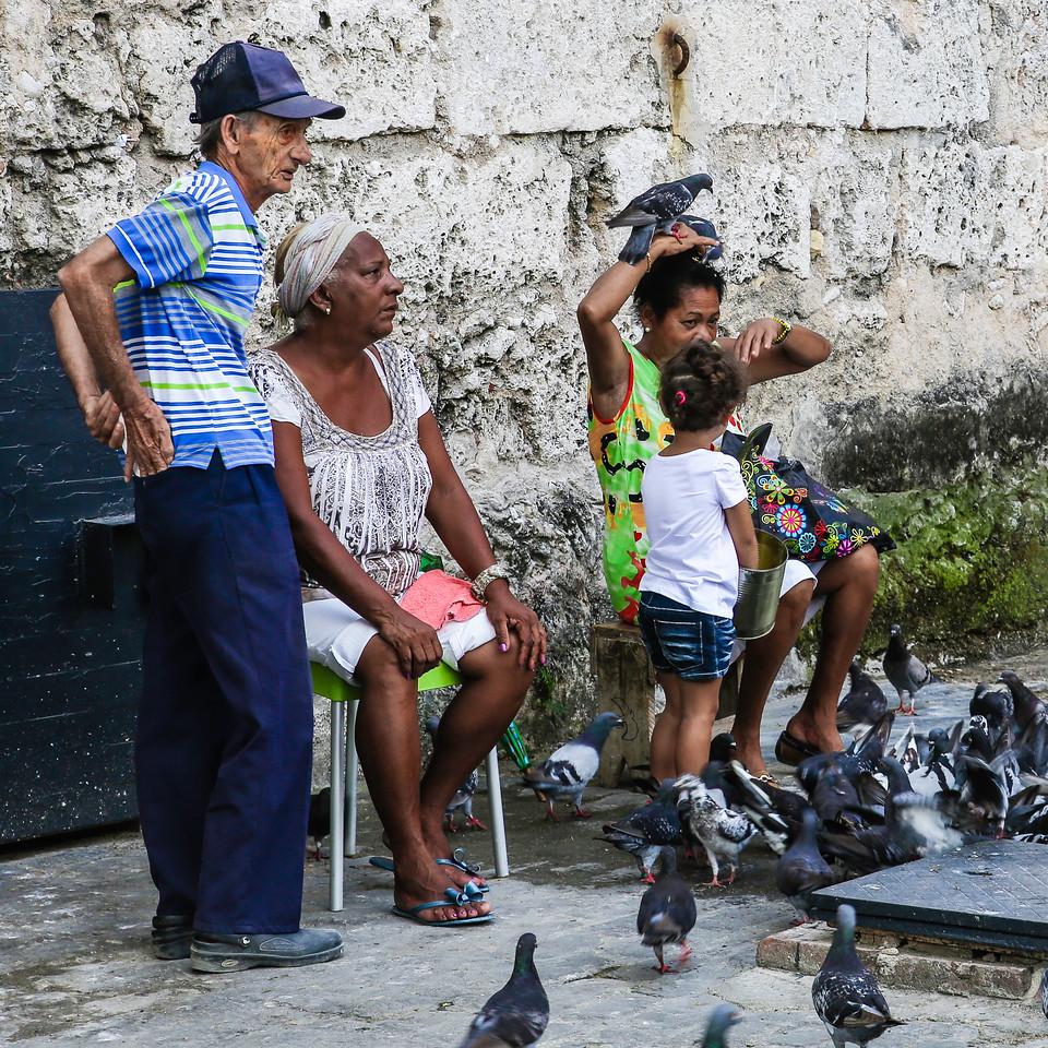 Pigeon people