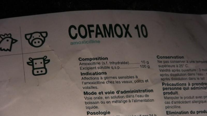 amoxicilline-canards-foie-gras-2008-fr-C.jpg