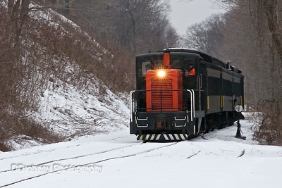 Eagle Flyer - Winter Steam Train/Ecotour