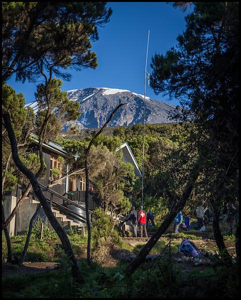 Mweka Camp, 3100m, Day 7