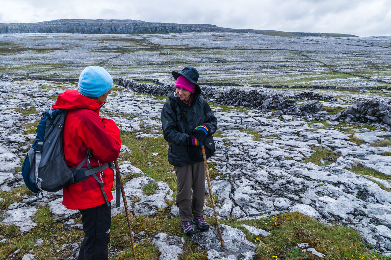The Burren; some of these stone walls are thousands of years old.