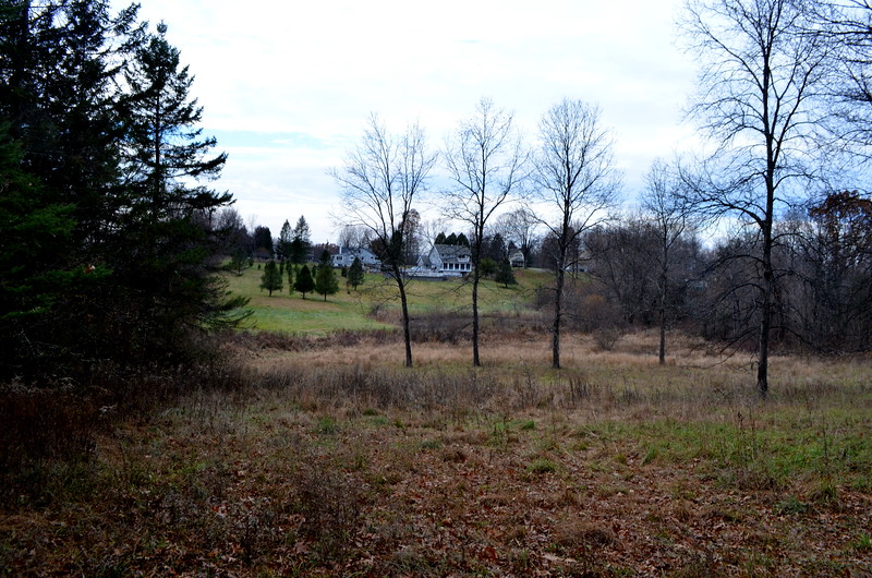 View from across the Black Creek near Jacob's line.