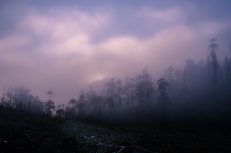 Clare-2019-10-03-3763.jpg