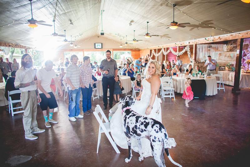 2014 09 14 Waddle Wedding-716.jpg