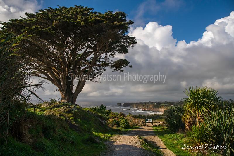 Cape Foulwind coastal lighthouse walk 02