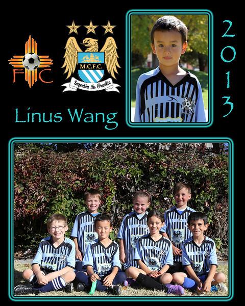 Linus2.jpg