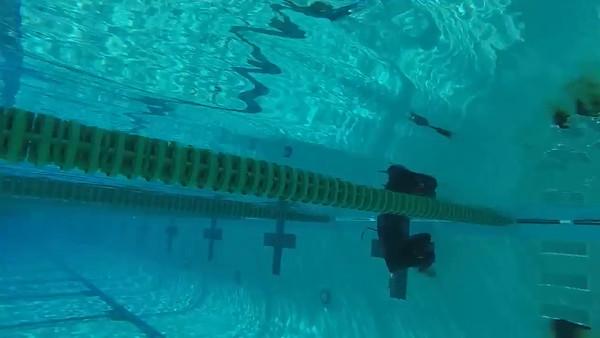 Example Swim Videos