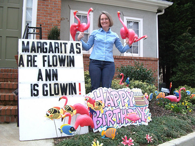 3:18:10 Ann's Birthday Flamingos