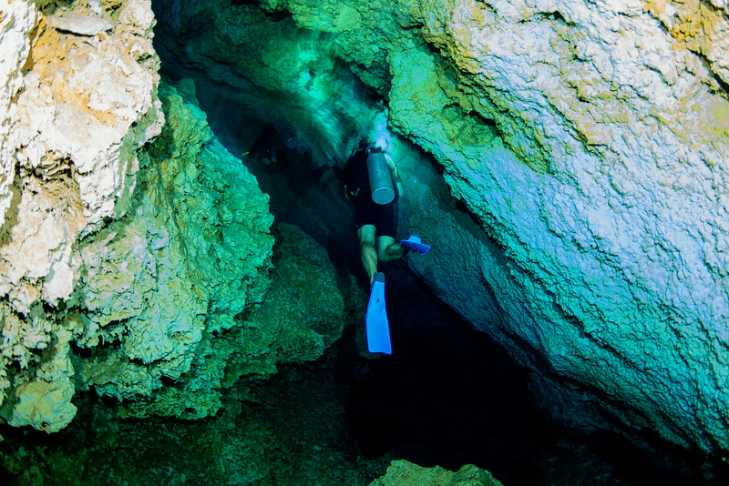 2014 Whale Shark - Cave Adventure-122.jpg