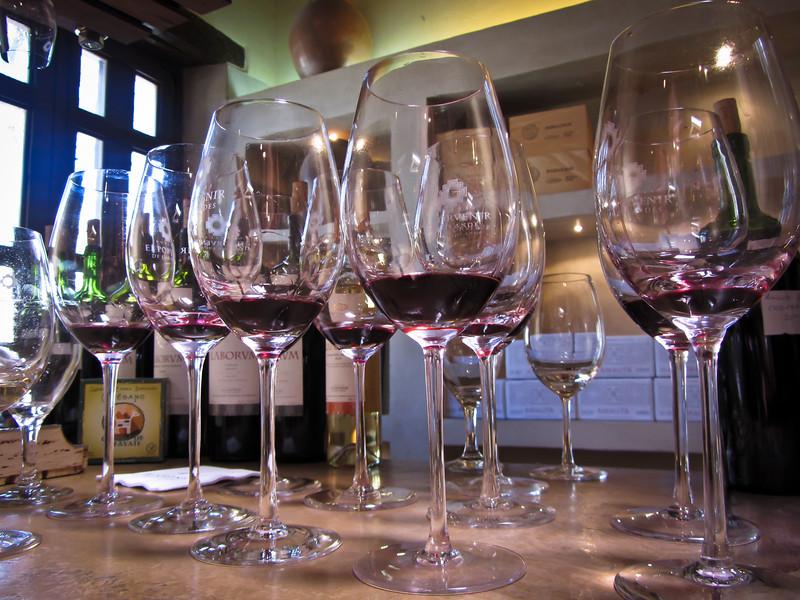 Cafayate 201203 El Porvenir Wine (19).jpg