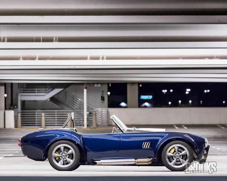 Cobra-248.jpg