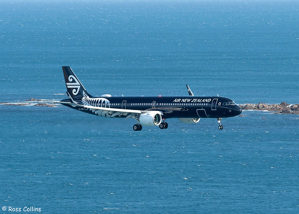 First Post-Covid International Arrival at Wellington 2021