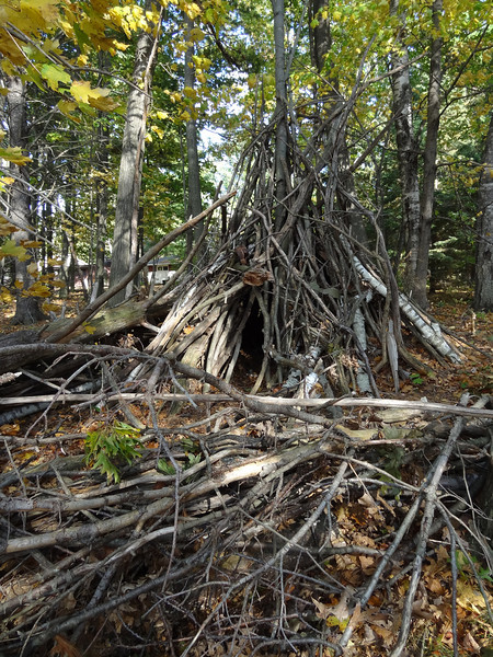 Replica of a small shelter and protective fence built by the Native Americans. The shelter would have been covered with branches.