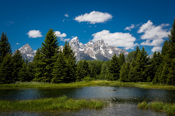 Yellowstone Trip 2015