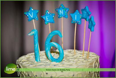 Venita's Sweet 16 Birthday Party