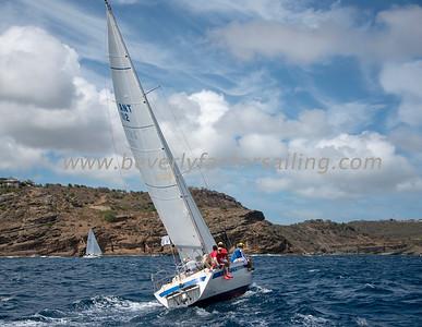 CRICKET - Under Sail