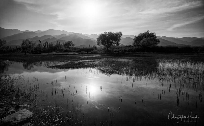20140713_ladakh_1558.jpg