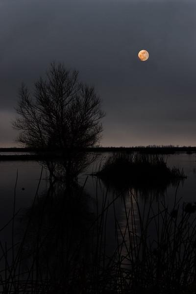 MoonriseEgiesker.jpg