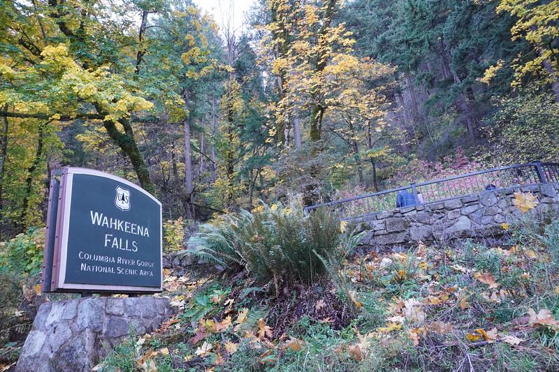 Gorge Falls 26.JPG