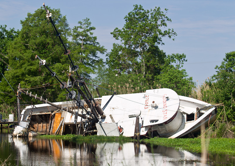 Victim of Katrina