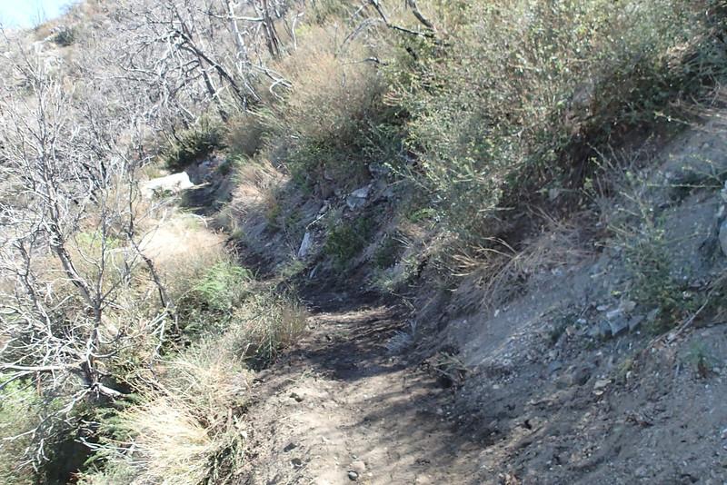 20140316023-Strawberry Peak Trailwork